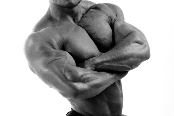 bodybuilder_03_hd_picture(600x400)